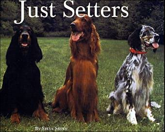 Just Setters